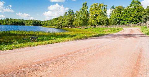 A gravel road winding around a lake surrounded by lush green trees and grass.