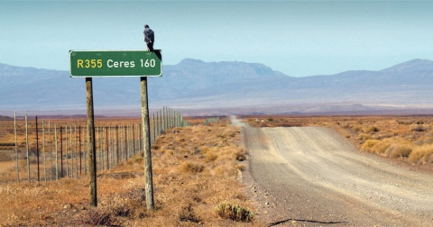 A bird sitting on top of an R355 160 Ceres road sign next to a gravel road in a Karoo landscape.